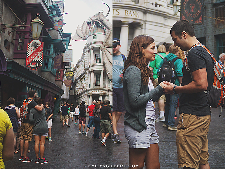 diagon alley proposal - emilyrgilbert.com